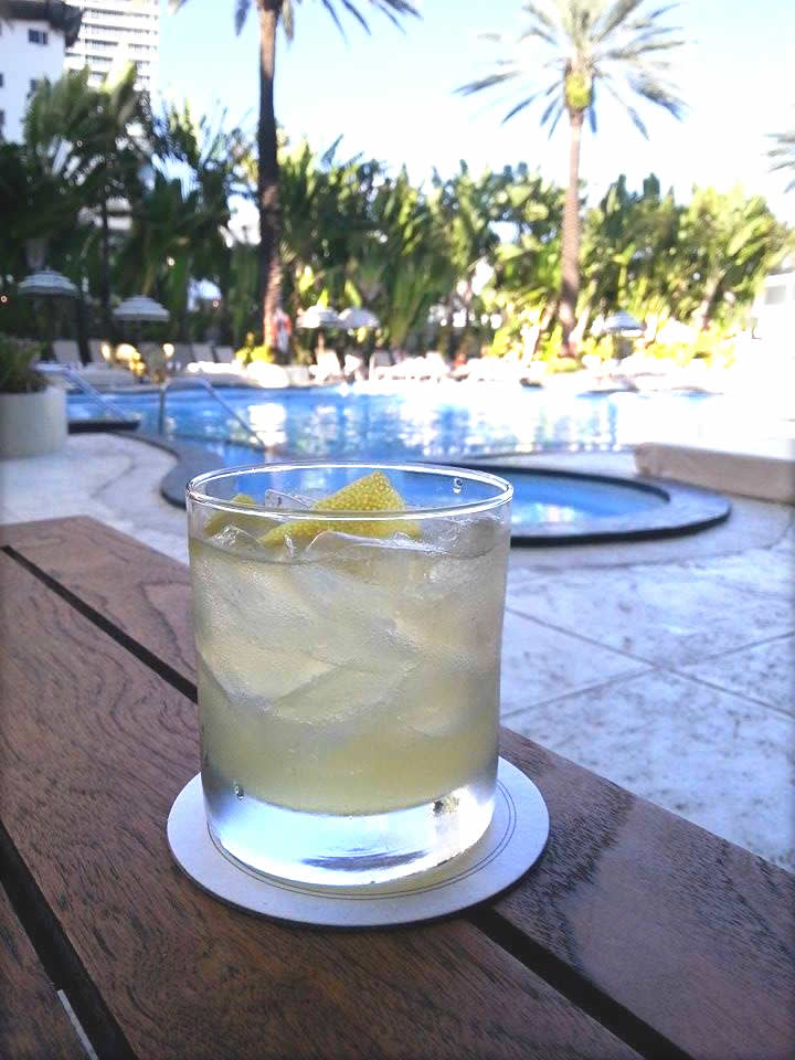 MSM Miami Shoot Magazine-Raleigh Hotel-scotchtail