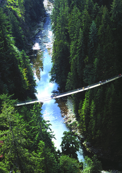 Capilano Suspension Bridge Aerial